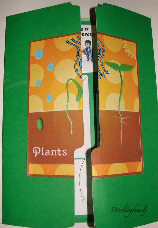 plant lapbook cover