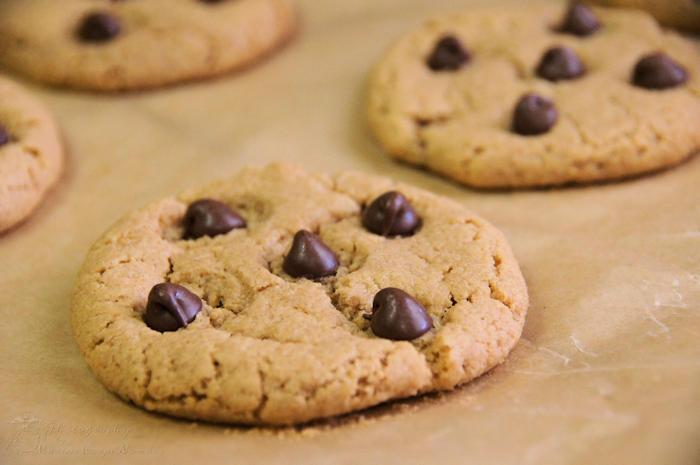 Flourless Peanut Butter Chocolate Chip Cookies - Marine ...