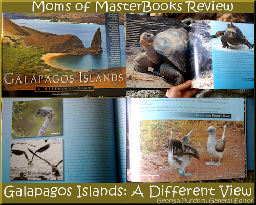 Galapagos Islands Book Review