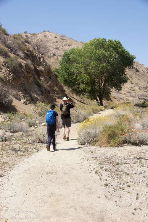 Hiking Canyon Trail