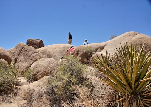 Skull Rock Climbing Area