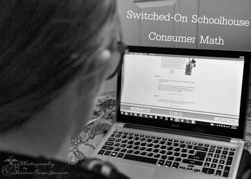 Switch-On Schoolhouse Consumer Math
