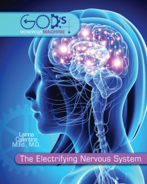 The Electrifying Nervous System by Lainna Callentine MD