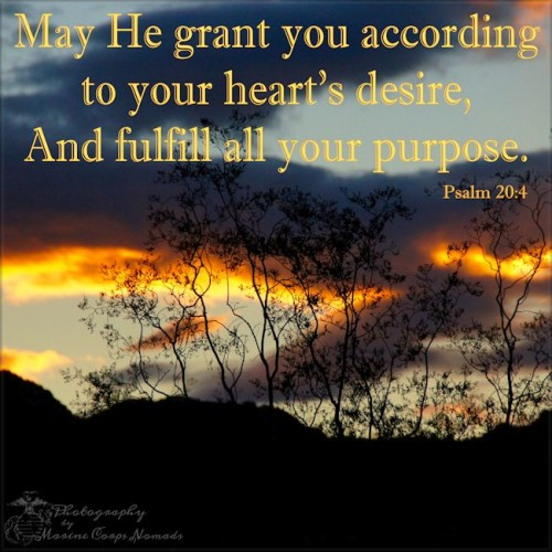 May He grant you according to your heart's desire, and fulfill all your purpose. Psalm 20:4