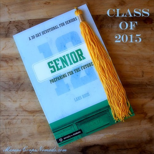 Senior: Preparing for the Future - A 30-day Devotional for Seniors by Lars Rood