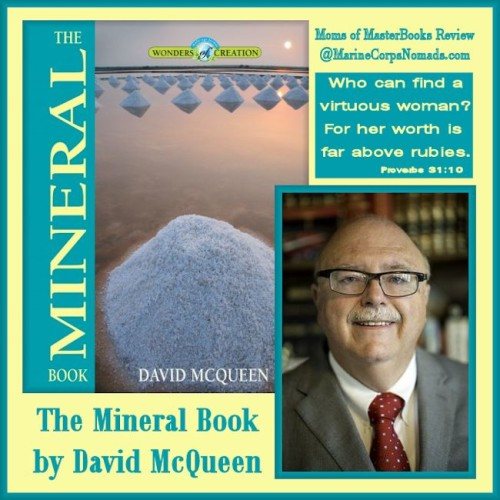 The Mineral Book by David McQueen Review