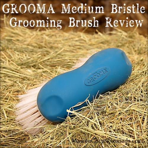 GROOMA Medium Bristle Grooming Brush Review