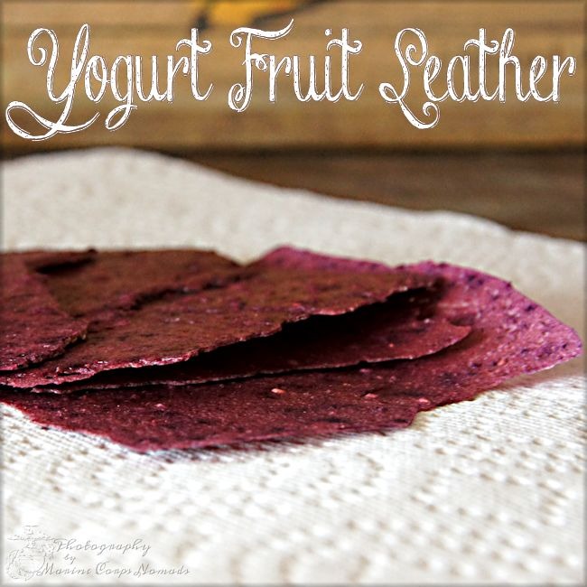 Yogurt Fruit Leather