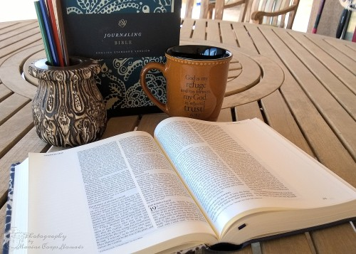 ESV Journaling Bible from Crossway