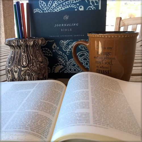 Giveaway for the ESV Journaling Bible from Crossway