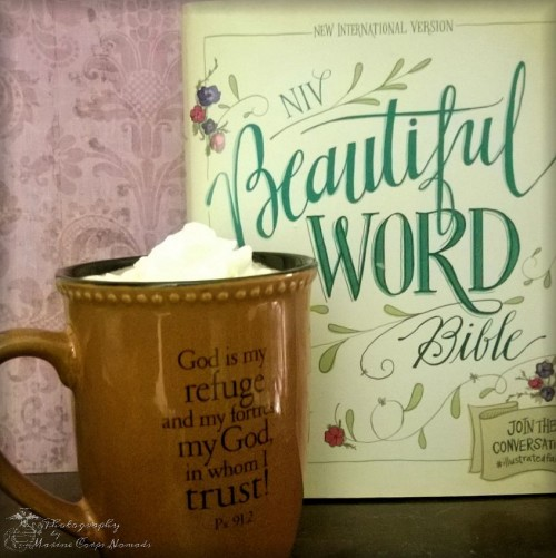 NIV Beautiful Word Journaling Bible