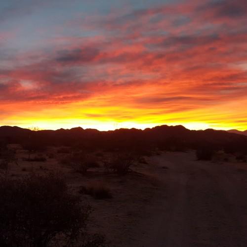 A beautiful Valentine's Sunset Walk