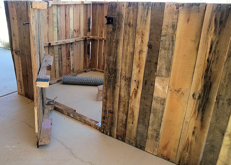 Human door in the coop