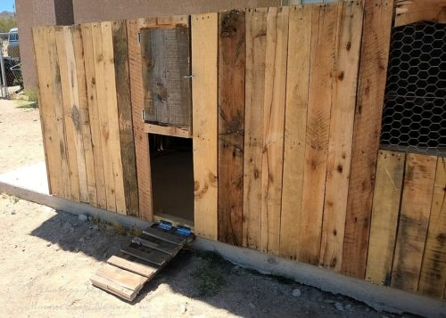 Pallet coop front with ramp down