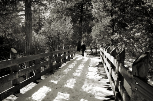 Hanging out by the snow-covered bridge