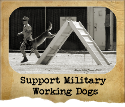 Ways to support military working dogs