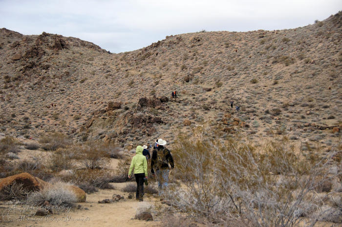 49 Palms Oasis Trail, Joshua Tree National Park, CA - hikers heading back to trailhead
