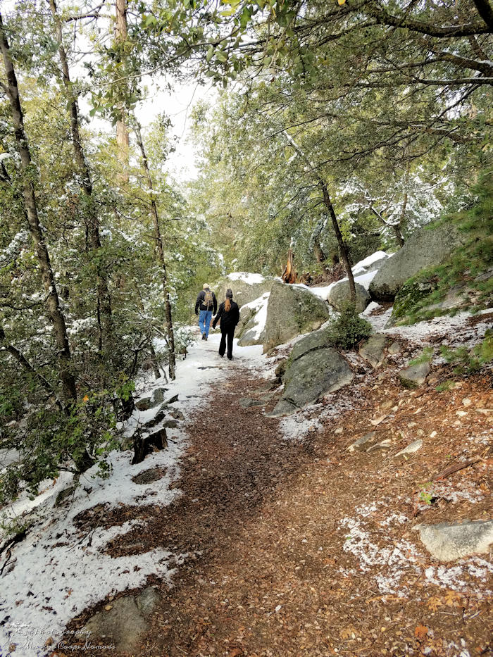 Ernie Maxwell Scenic Trail - Family Hiking