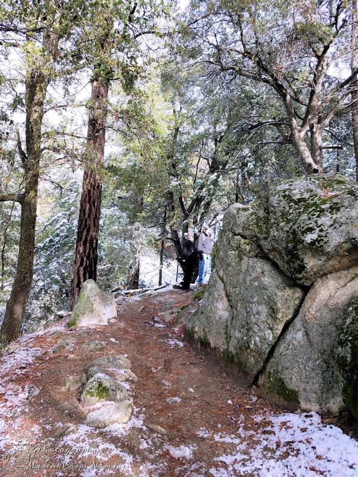 Ernie Maxwell Scenic Trail - snowy family hike