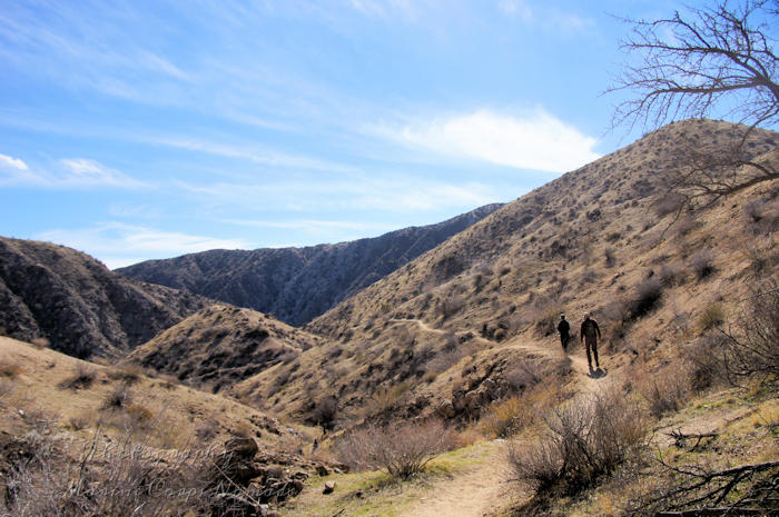 Canyon Trail Hike Big Morongo Preserve, CA