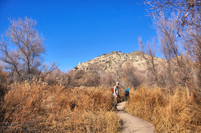 Big Morongo Canyon Preserve | Canyon Trail | California | Marine Corps Nomads | Marsh Trail