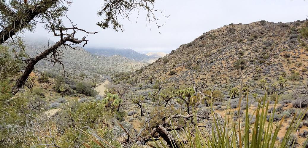 West View Loop Trail Hike