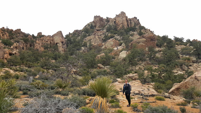 Queen Mountain Hike