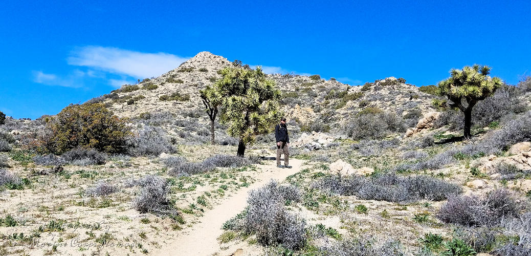 Warren Peak Trail Hike
